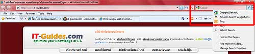 Add-ons Search IE