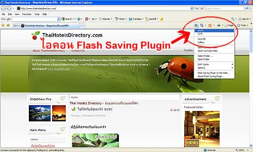 Flash Saving Plugin
