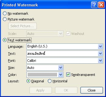 watermark screen word 2007