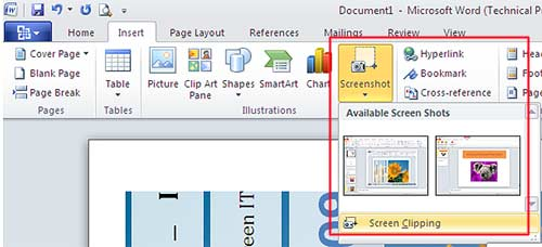Screenshot Screen Capture Office 2010